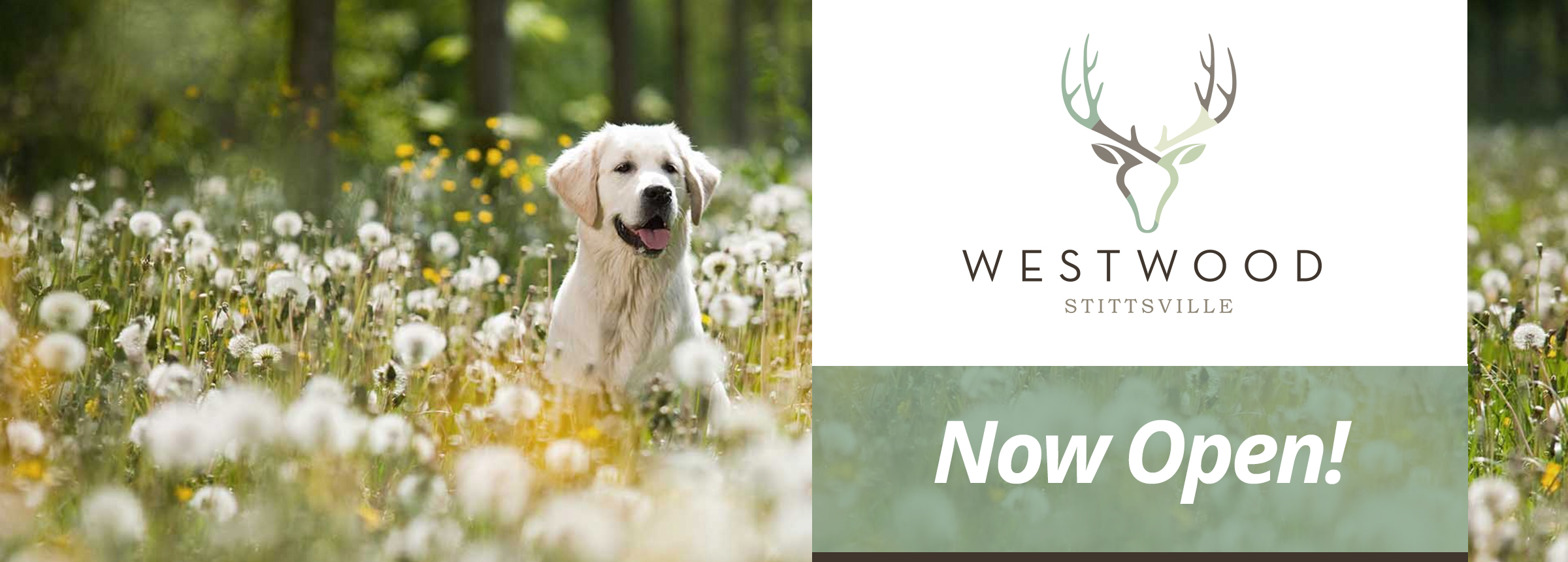 Westwood Stittsville Opening Fall 2018, a modern new community on the edge of Stittsville in Ottawa West.