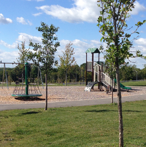 Childrens Park in the Woodhaven Neighbourhood